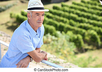 looking over at vineyard