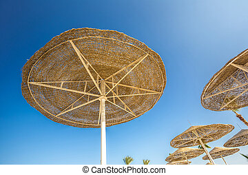 Looking up at big beach umbrellas against the blue sky.