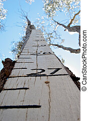 looking up at the flood height marker to the blue sky