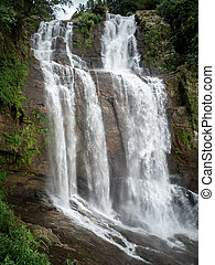 Looking up on the high powerful waterfall cascade in jungle forest