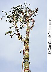 looking up to top of may pole