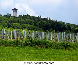 Lookout Tower on the Kank Wineyard