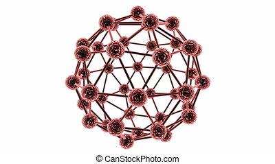 loop atom with alpha