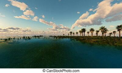 loop rotate camera near tropical island with palms