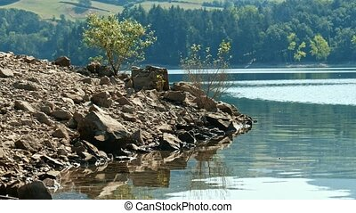 loopable lake shore tranquil scene on rocky small tree background .