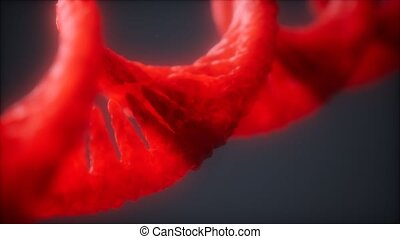 structure of the DNA double helix loop animation, DNA molecular and biologigical footage concept