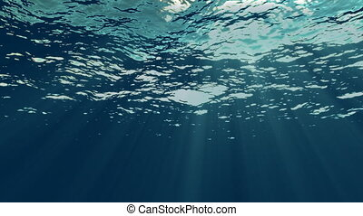 1080p full HD perfectly looping underwater scene with light rays through water's moving surface. Great for background. Perfect colors and picture quality.
