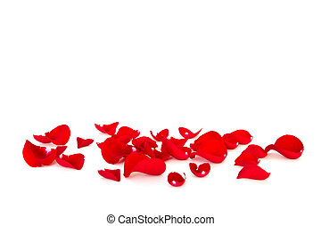 red rose petals - loose red rose petals
