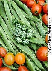 loper, cucamelons, bonen, rood groen, tomaten