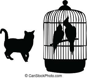 loros, y, gato