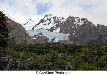 los, glacier, national, piedras, parc, blancas, argentine,...
