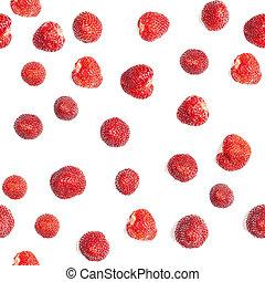 lose, erdbeeren, hintergrund, weißes