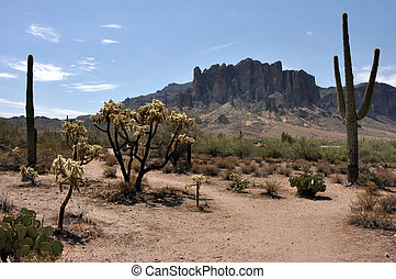 Lost Dutchman State Park along the Apache trail