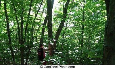 Lost Man Climbs Tree