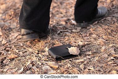 Lost money - Walking man lost a wallet (outdoors)