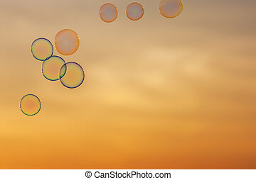 bubbles on the background of sunset sky