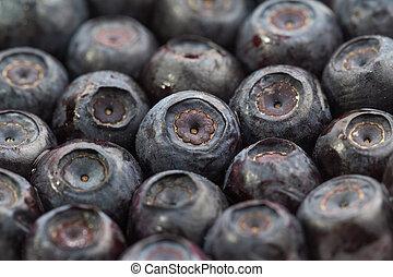 Lot of unfrozen blueberries. Macro view. Close-up.