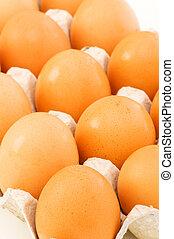 lotes, ovos, caixa papelão
