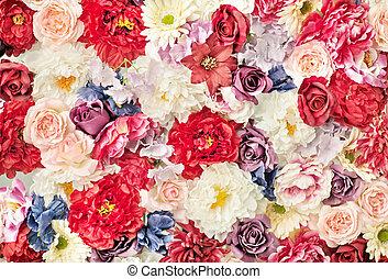 lotissements, fleurs, coloré