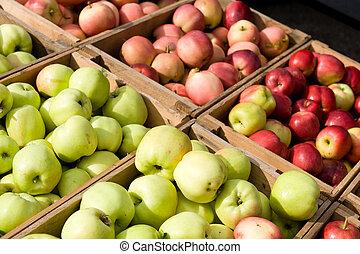 lotissements, frais, hand-picked