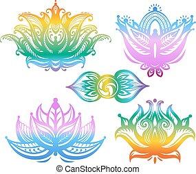 loto, ornamentale, fiori, set