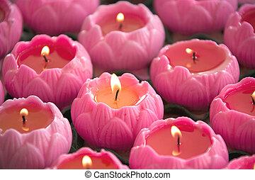 loto, velas, formado