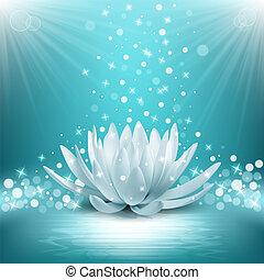 loto, vettore, magia, flower., illustrazione