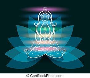 loto, yoga, meditación, mujer, silueta