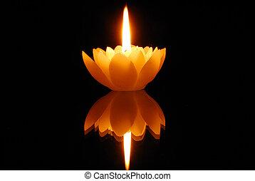 lotos, kerzenschein