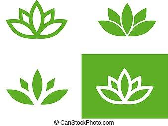 lotos, satz, grün