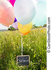 lots of ballons on the meadow and a board with the word spring