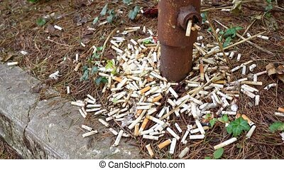 lots of cigarette butts and debris near the rusty pillar, pipes sticking out of the ground. a place to smoke. environmental garbage problem in the city.