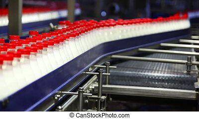 lots of plastic bottles with milk and red caps move near empty conveyor at factory