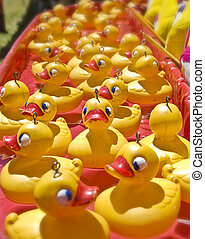 lots of rubber ducks floating along