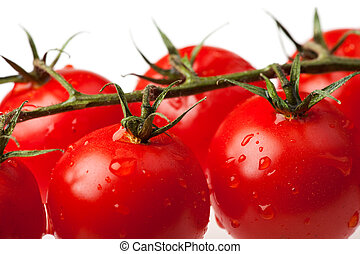 lots of tomatoes isolated on white background