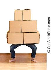 lotti, mentre, scatole, lotta, cartone, sollevamento, uomo