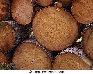 Lottsa Logs