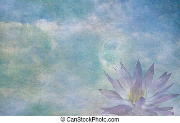 Lotus and moon