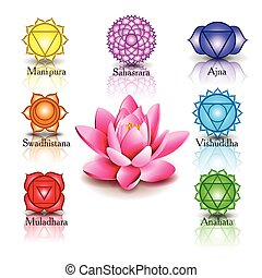 Lotus and Seven chakras