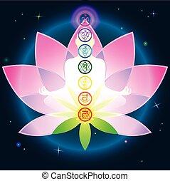lotus, chakras