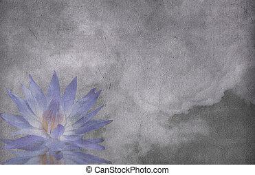Lotus cloud