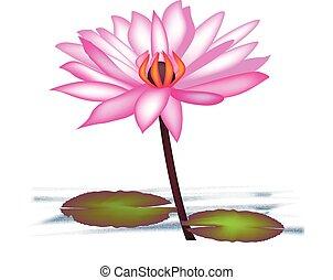 lotus fleur, logo