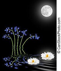 lotus, fleurs, lis, jacinthe des bois
