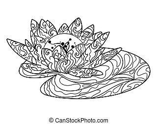 Lotus flower coloring book for adults vector - Lotus water...