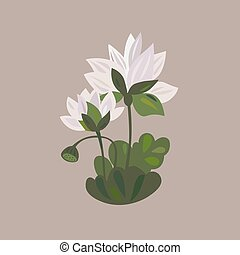 lotus flower icon water lily flower