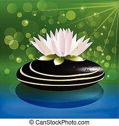 Lotus flower on black stone water background