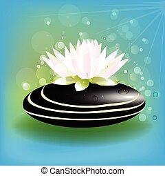 Lotus flower zen