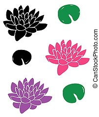 Lotus Flowers - vector lotus flowers