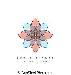 lotus, géométrie, fleur, sacré
