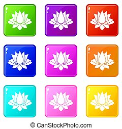 Lotus icons 9 set - Lotus icons of 9 color set isolated...